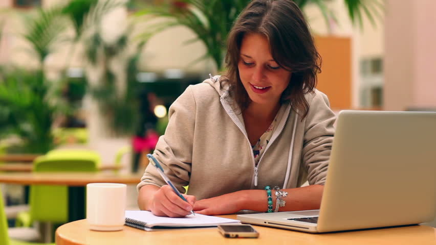 Business contract writing services